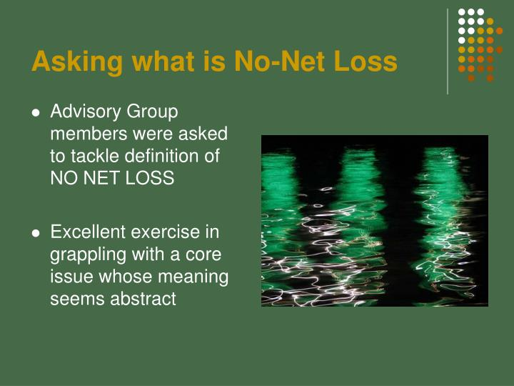 Asking what is No-Net Loss