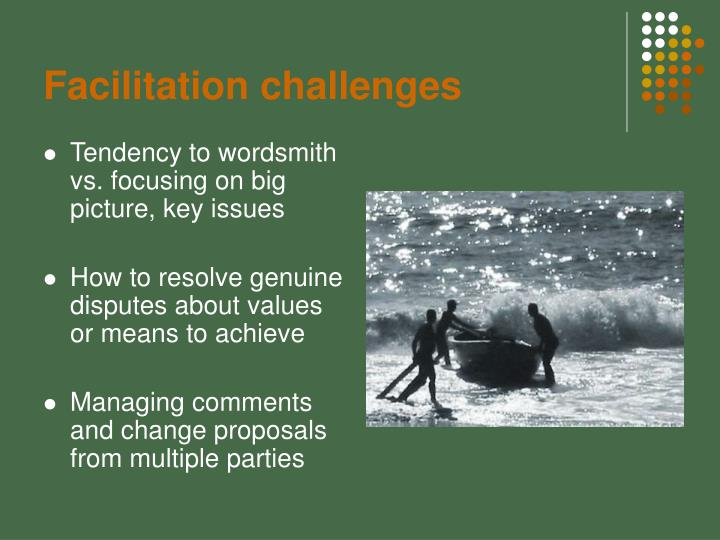 Facilitation challenges