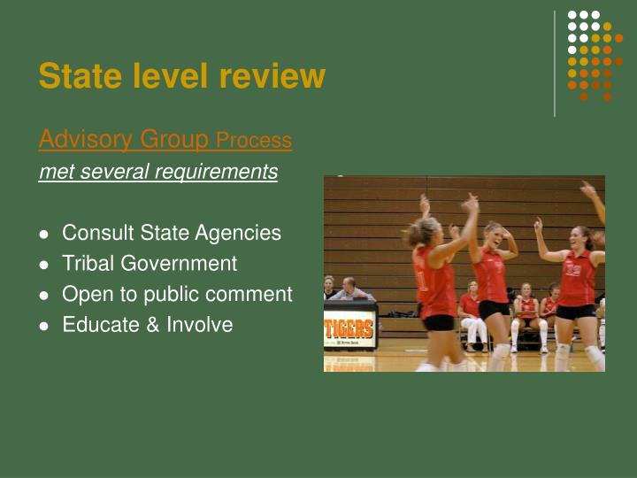 State level review