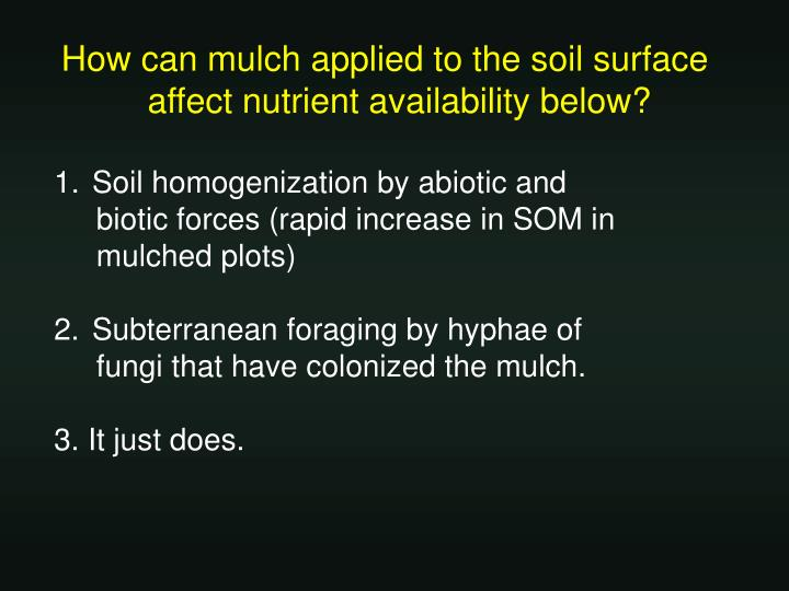 How can mulch applied to the soil surface affect nutrient availability below?