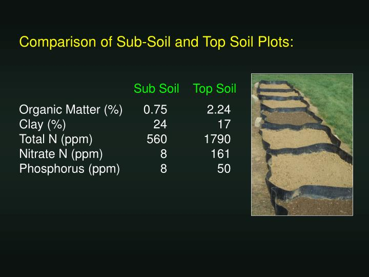 Comparison of Sub-Soil and Top Soil Plots: