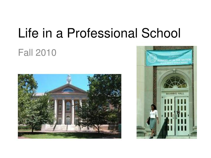 Life in a professional school
