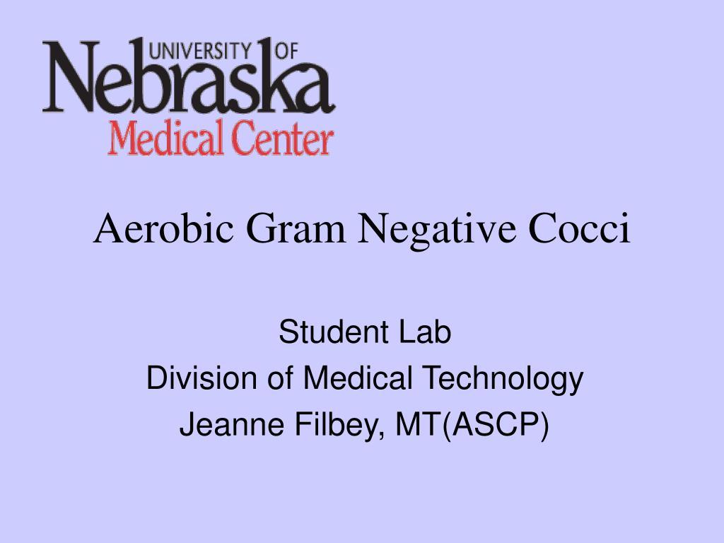 Ppt Aerobic Gram Negative Cocci Powerpoint Presentation Id3021698