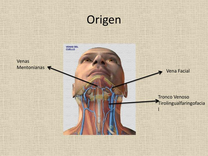 Origen