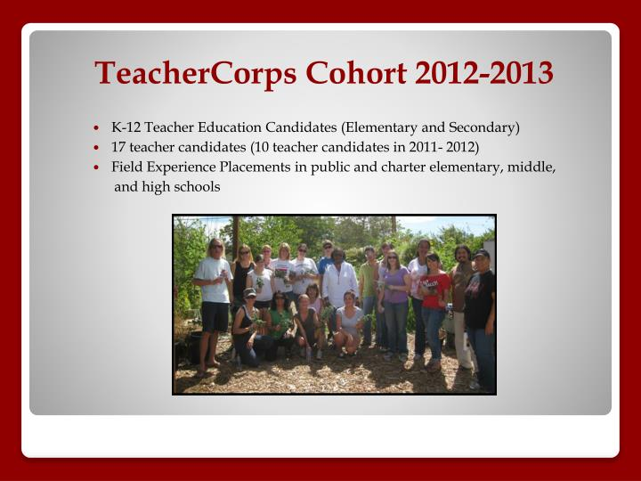 K-12 Teacher Education Candidates (Elementary and Secondary)