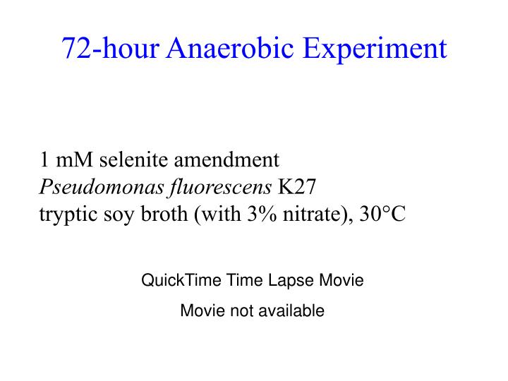 72-hour Anaerobic Experiment