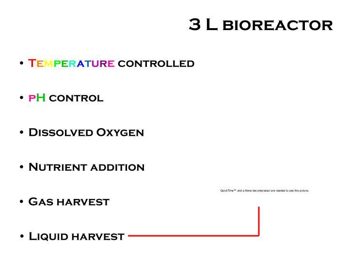 3 L bioreactor