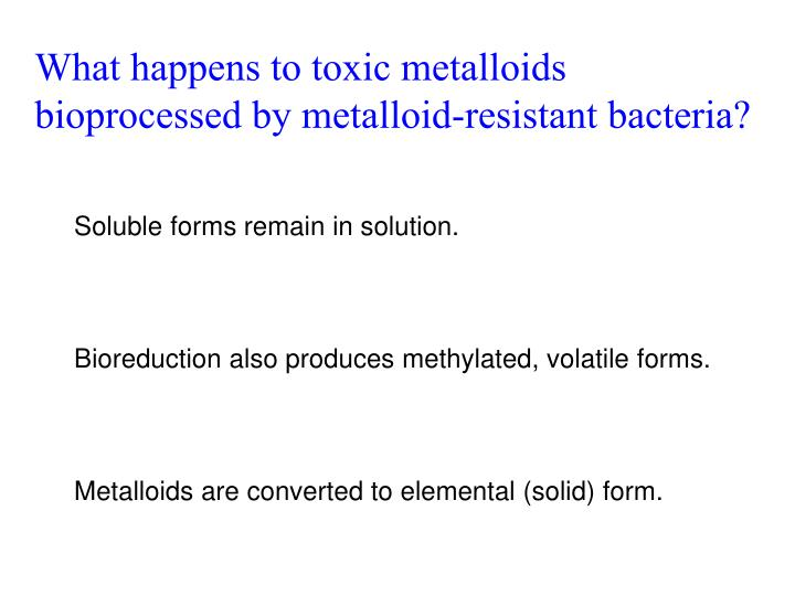 What happens to toxic metalloids bioprocessed by metalloid-resistant bacteria?