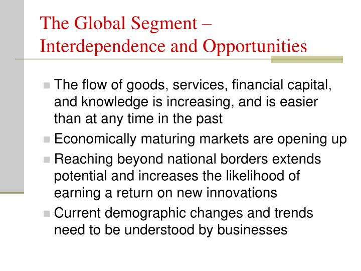 The Global Segment – Interdependence and Opportunities