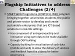 flagship initiatives to address challenges 2 4