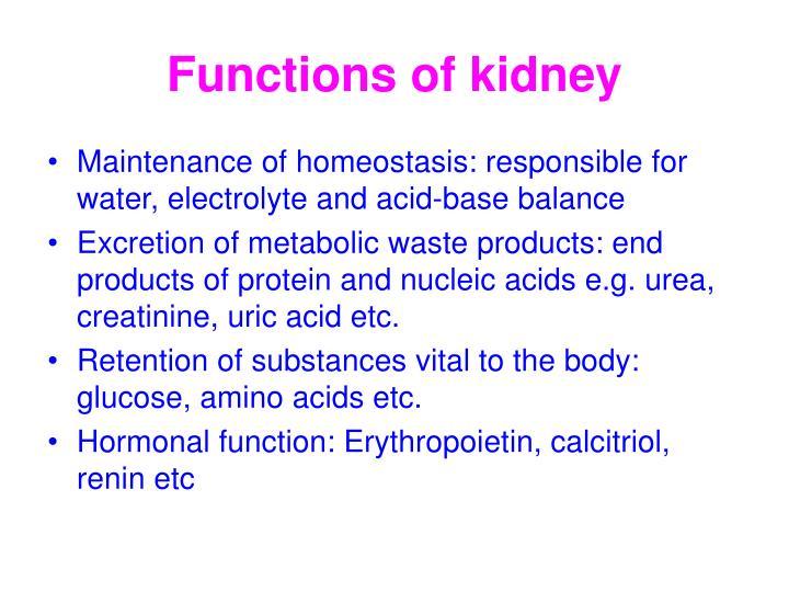 Ppt Kidney Function Test Powerpoint Presentation Id3024062