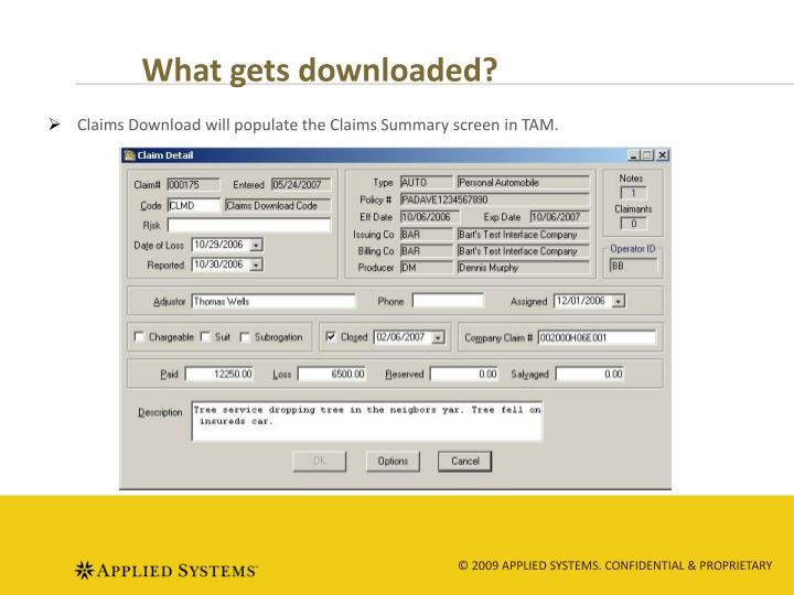 What gets downloaded?
