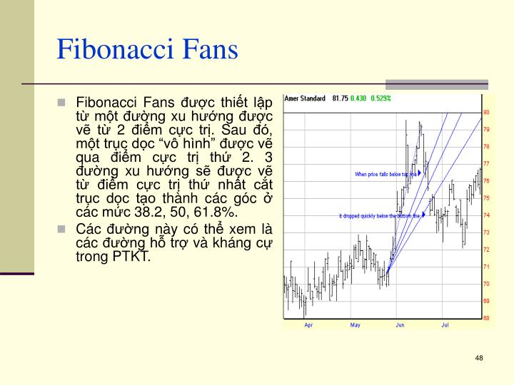 Fibonacci Fans