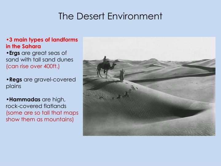 The Desert Environment