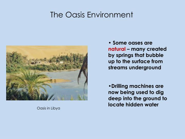 The Oasis Environment