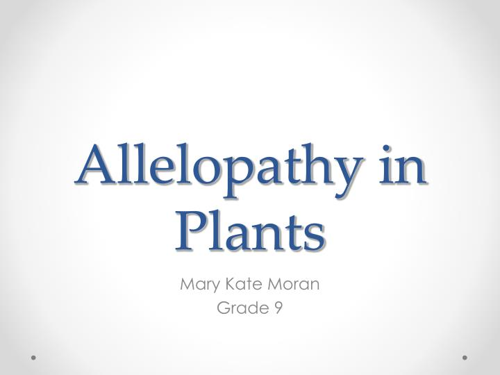 effects of allelopathy on plants controlled I plant extracts greenhouse-grown seeds of test species were soaked for at least 10 h in the extract or the control solution and allelopathic effects of.