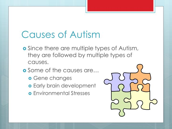 autism general overview of autism Autism is a developmental brain disorder it affects your social, behavioral, and communication skills people who have autism start showing signs at an early age.