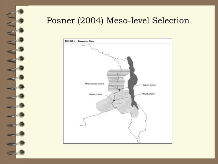 Posner (2004) Meso-level Selection