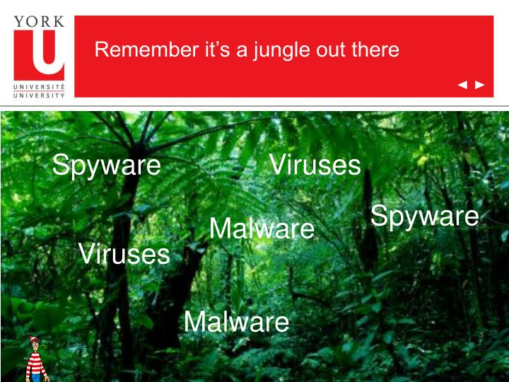Remember it's a jungle out there