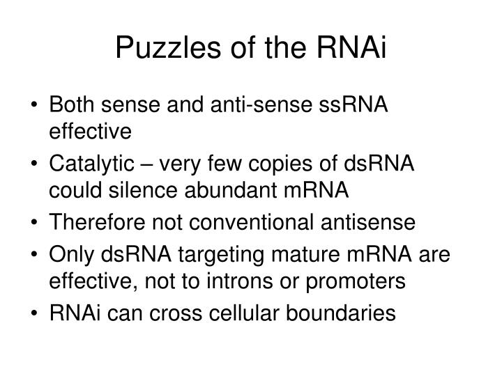 Puzzles of the RNAi