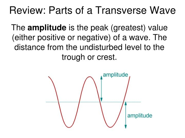 Review parts of a transverse wave