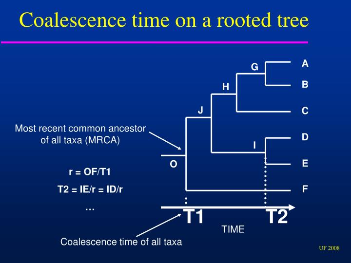 Coalescence time on a rooted tree