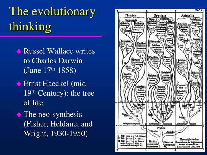 The evolutionary thinking