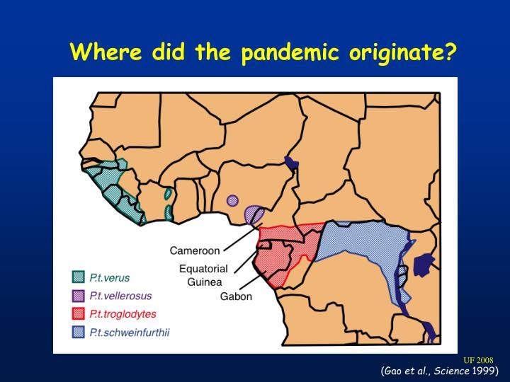 Where did the pandemic originate?