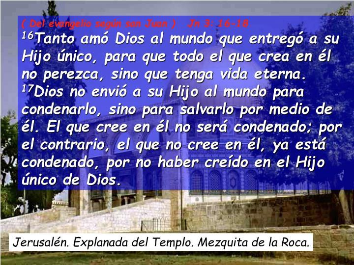 ( Del evangelio según san Juan )   Jn 3: 16-18