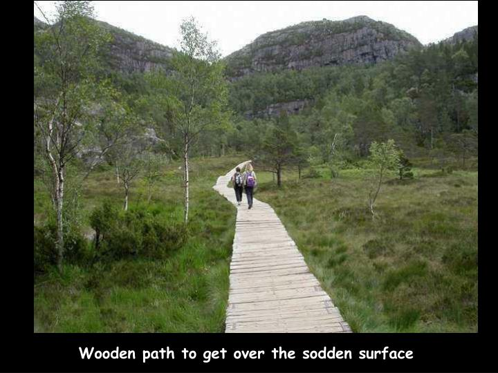 Wooden path to get over the sodden surface