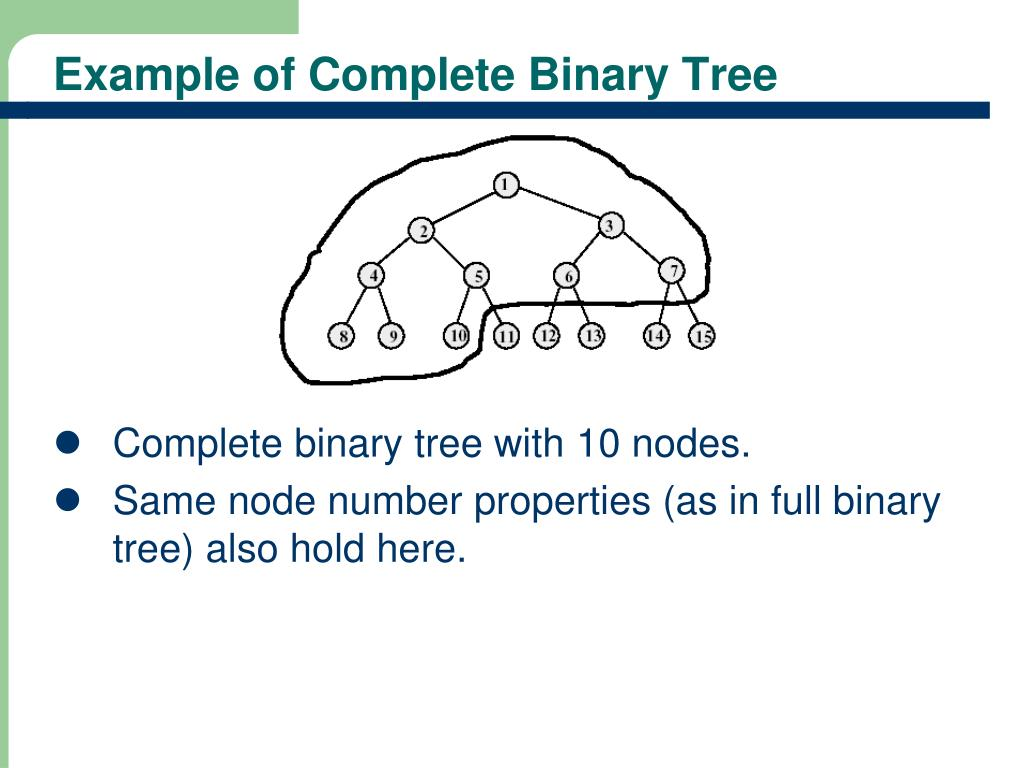 PPT - General Tree Concepts Binary Trees PowerPoint