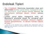endoleak tipleri1