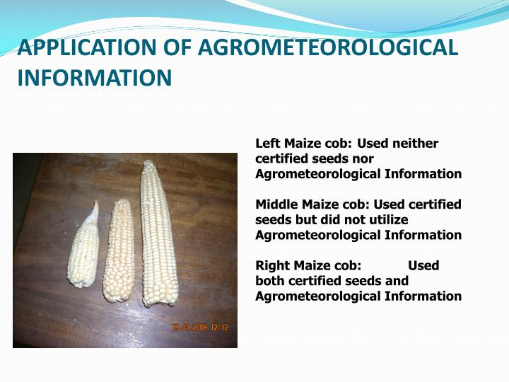 APPLICATION OF AGROMETEOROLOGICAL INFORMATION