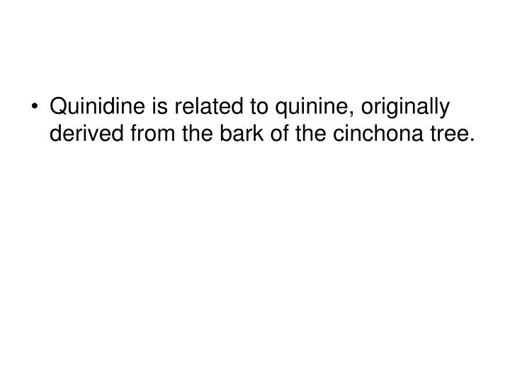Quinidine is related to quinine, originally derived from the bark of the cinchona tree.