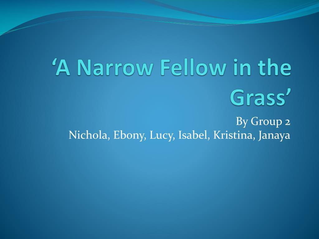 emily dickinson a narrow fellow in the grass analysis