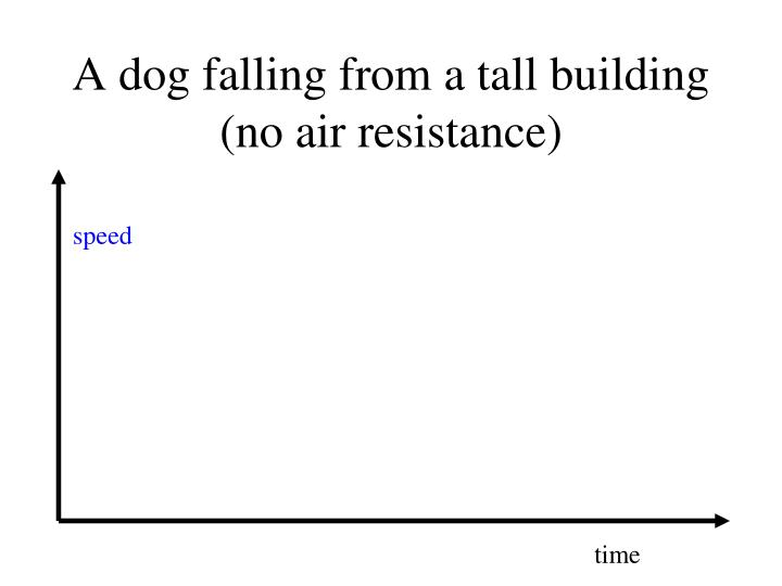 A dog falling from a tall building (no air resistance)