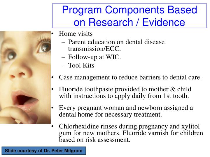 Program Components Based on Research / Evidence