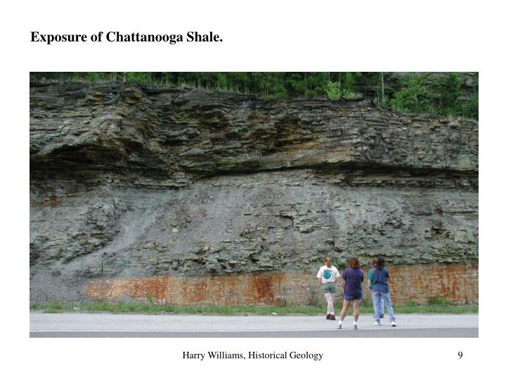 Exposure of Chattanooga Shale.