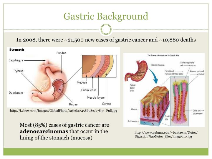 Gastric Background