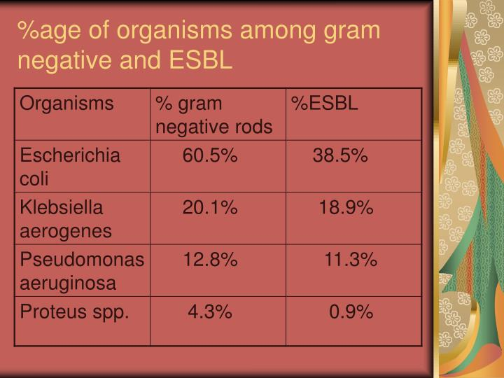 %age of organisms among gram negative and ESBL