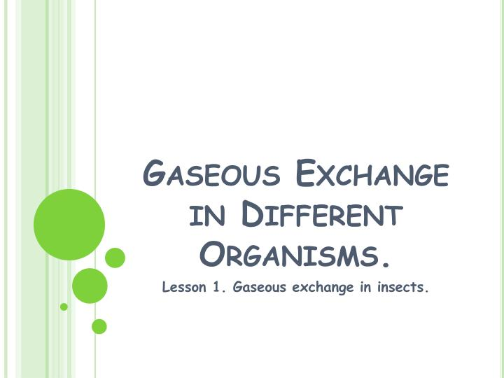 gaseous exchange in different organisms n.