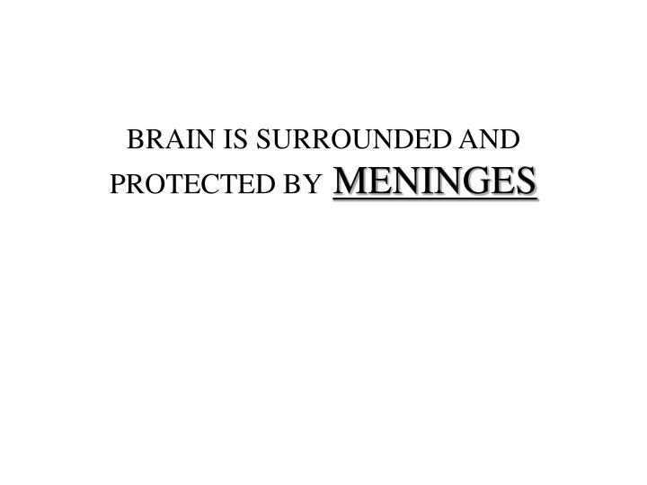 BRAIN IS SURROUNDED AND PROTECTED BY