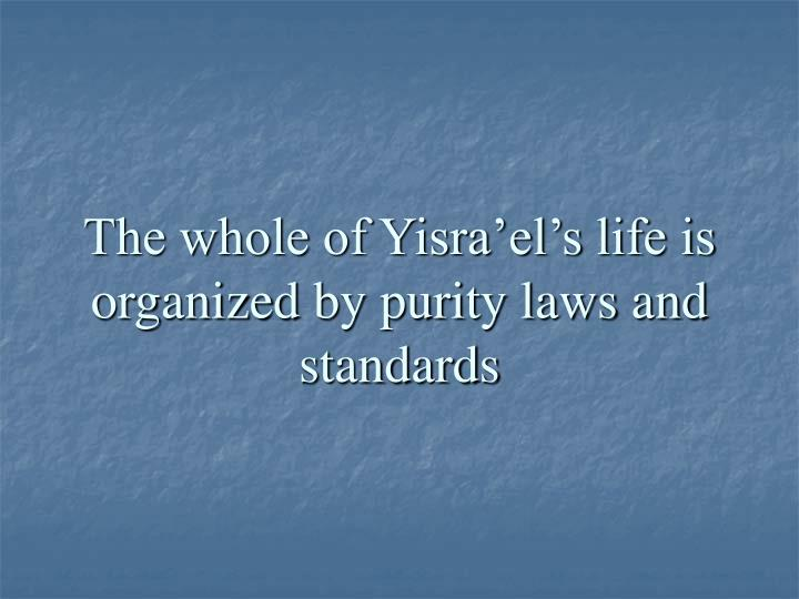The whole of yisra el s life is organized by purity laws and standards