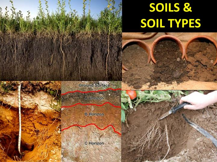 types of soil You can change different types of soil into rich loamy garden soil.
