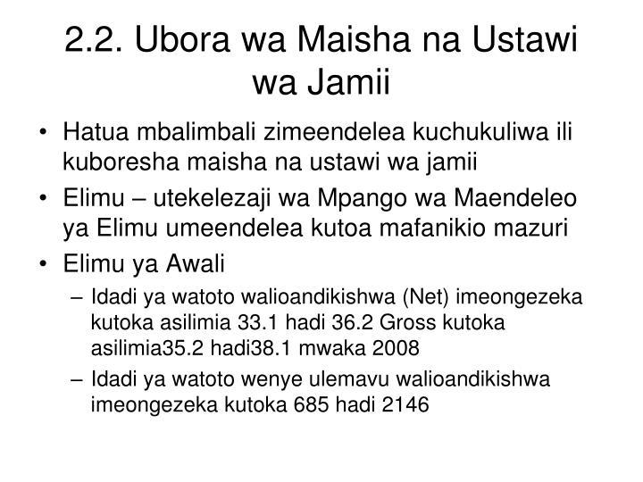 2.2. Ubora wa Maisha na Ustawi wa Jamii