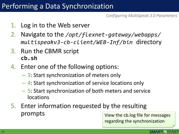 Performing a Data Synchronization