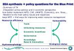 eea synthesis policy questions for the blue print
