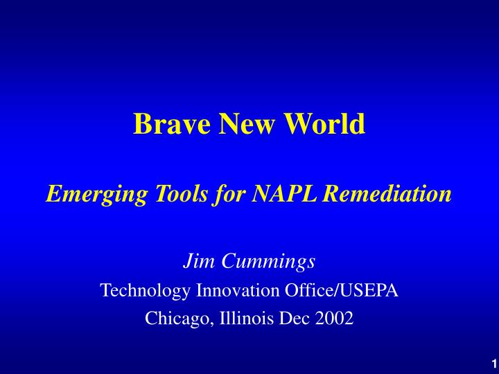 Brave new world emerging tools for napl remediation