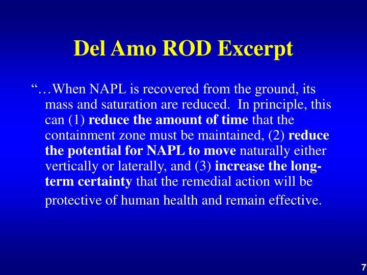 Del Amo ROD Excerpt