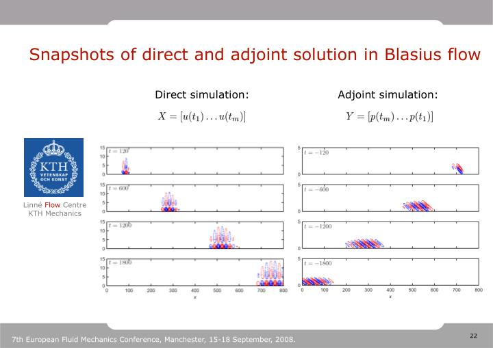 Snapshots of direct and adjoint solution in Blasius flow